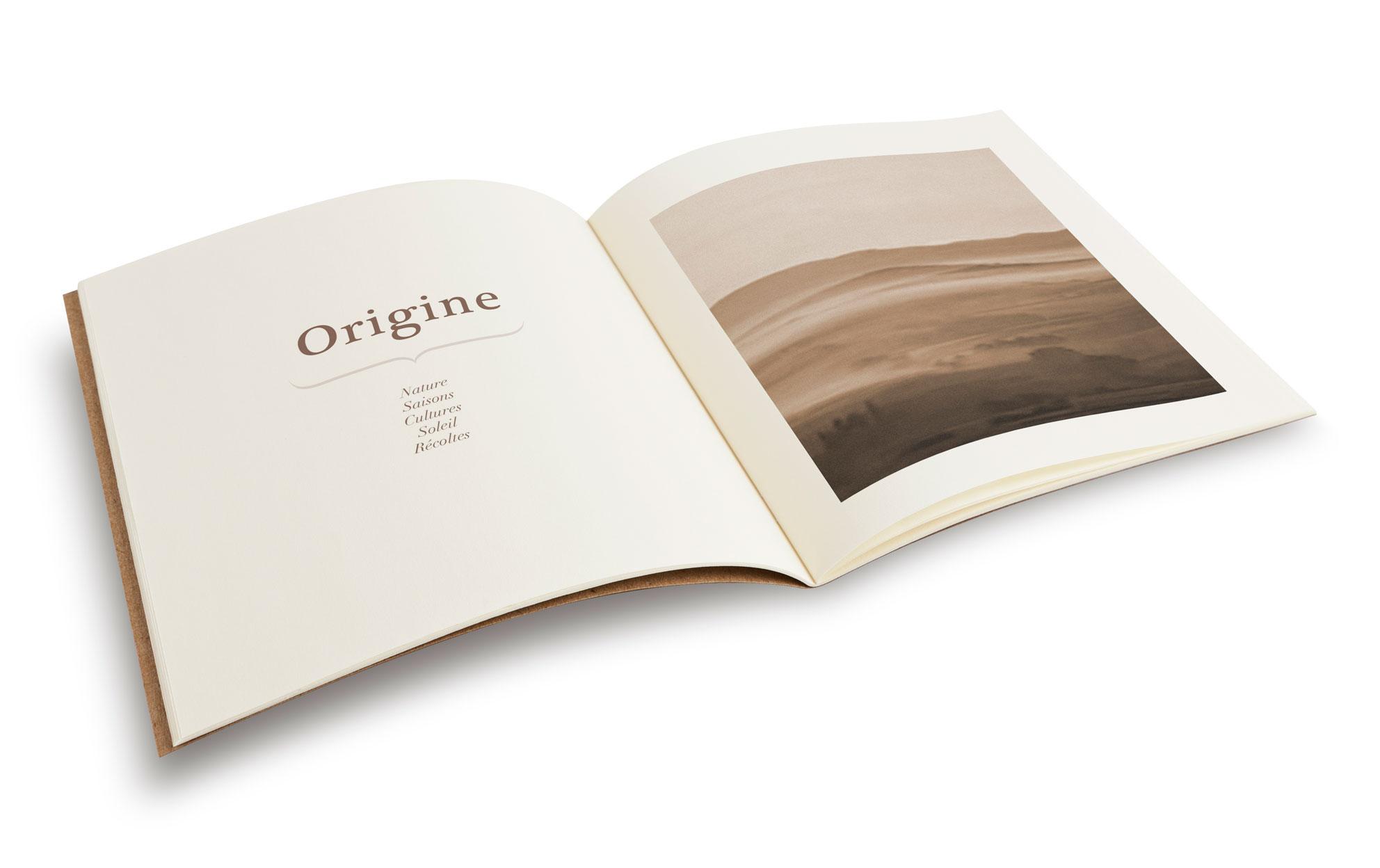 creation-design-graphique-identite-visuelle-adn-de-marque-naming-logo-herboristerie-nico-nico-nicolas-vignais-designer-graphique-independant-identite-visuelle-packaging-bordeaux-france-3